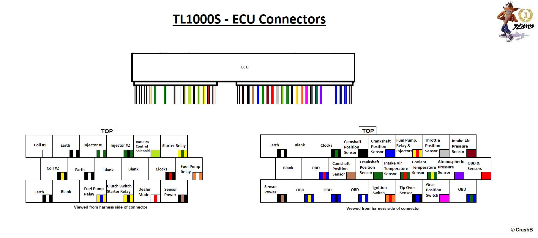 TLS_ECM_color.jpg-tls-ecu.png